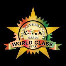 World Class ✭