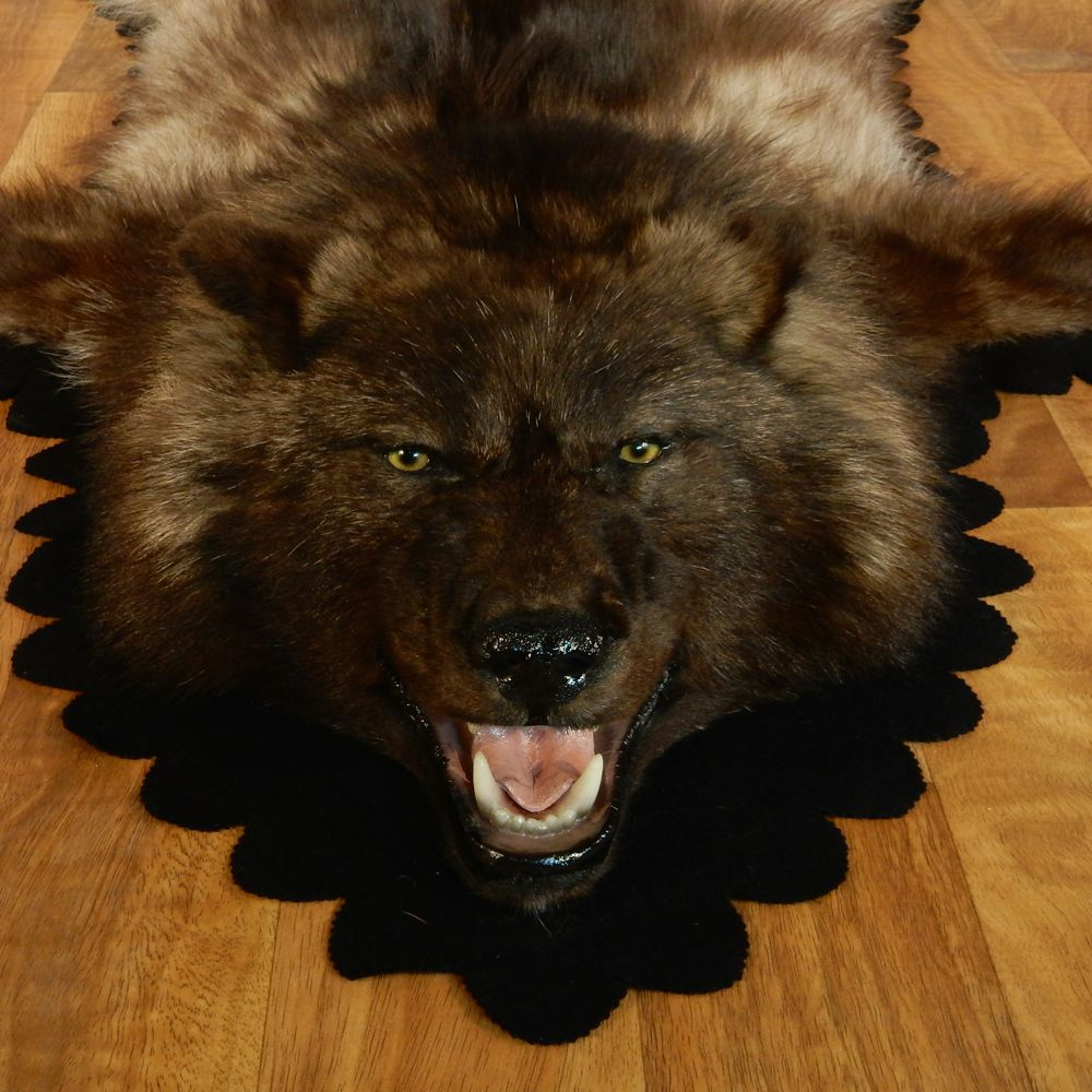 Black Wolf Taxidermy Rug - Grey Coyote