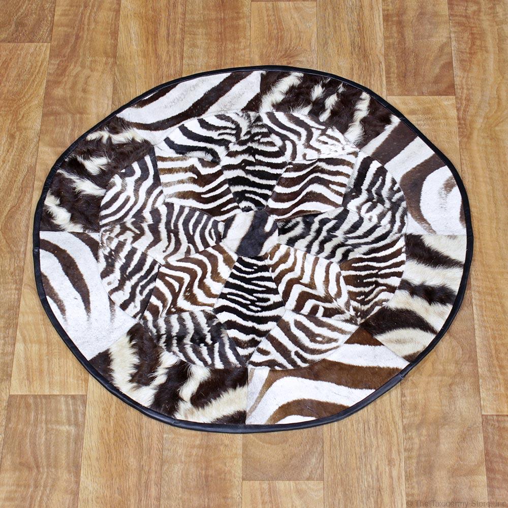 African Burchell's Zebra Circle Rug Taxidermy