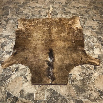 Black Wildebeest Rug Mount For Sale #20088 @ The Taxidermy Store