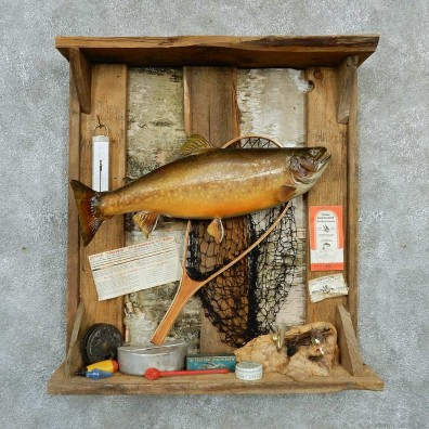 Captain's Classic Brook Trout Display Taxidermy Mount #13300 For Sale @ The Taxidermy Store