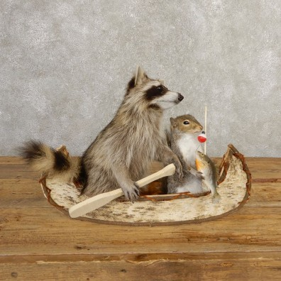 Canoeing Raccoon And Fishing Squirrel Novelty Mount For Sale #20746 @ The Taxidermy Store