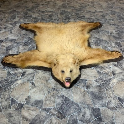 Cinnamon Black Bear Full-Size Rug For Sale #21863 @ The Taxidermy Store