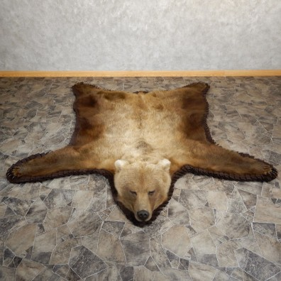 Grizzly Bear Taxidermy Rug Mount For Sale #19260 @ The Taxidermy Store