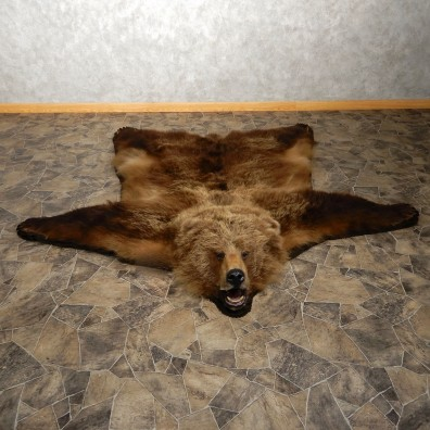 Grizzly Bear Taxidermy Rug Mount For Sale #19920 @ The Taxidermy Store