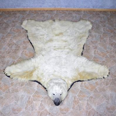 Polar Bear Taxidermy Rug #12330 For Sale @ The Taxidermy Store