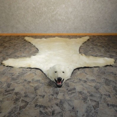 Polar Bear Taxidermy Rug #20403 For Sale @ The Taxidermy Store