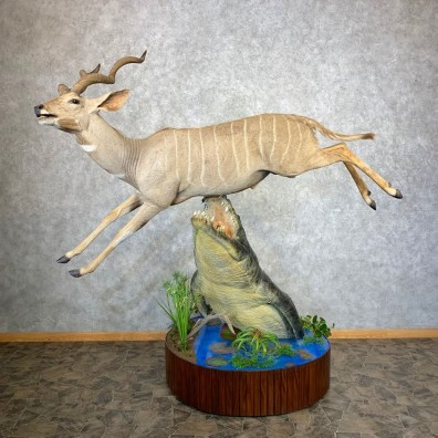 Reproduction African Nile Crocodile Attacking Lesser Kudu Taxidermy Mount #21672 For Sale @ The Taxidermy Store