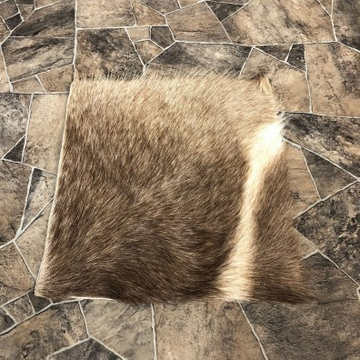 Waterbuck Hide Mount For Sale #20070 @ The Taxidermy Store