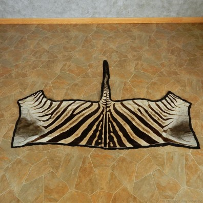 Zebra Half Rug Taxidermy Mount #13010 For Sale @ The Taxidermy Store