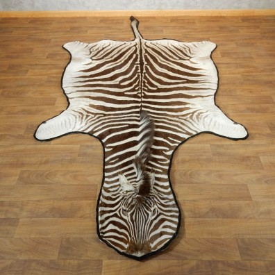 African Zebra Full-Size Taxidermy Rug For Sale #17870 @ The Taxidermy Store