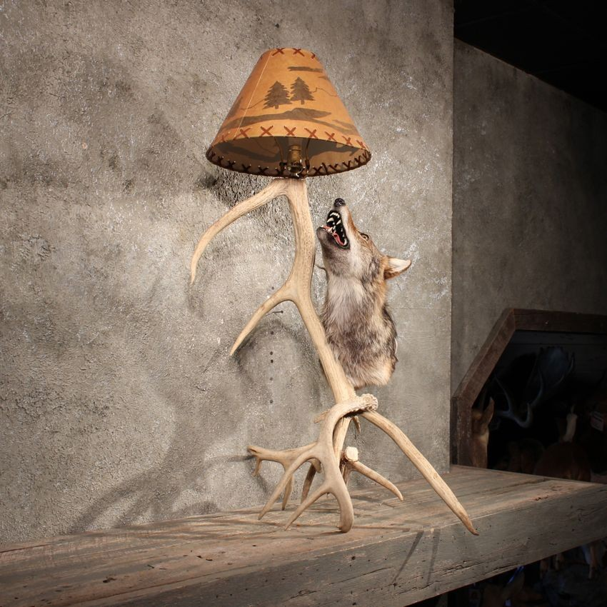 how to make an antler lamp