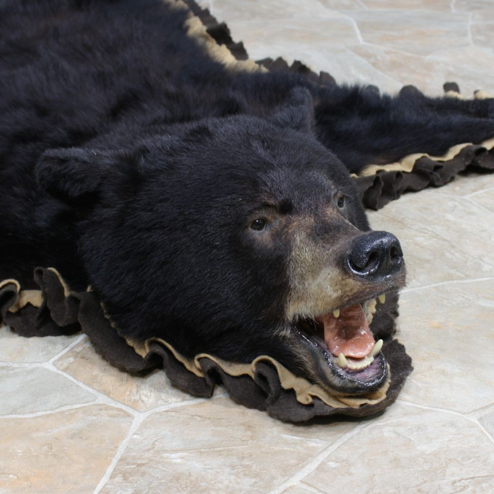 how to clean a bear rug