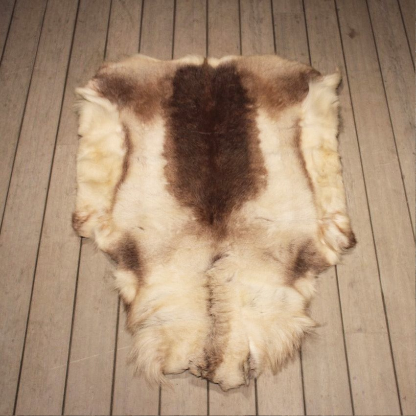 For Sale Tanned Taxidermy Caribou Skin For Decoration