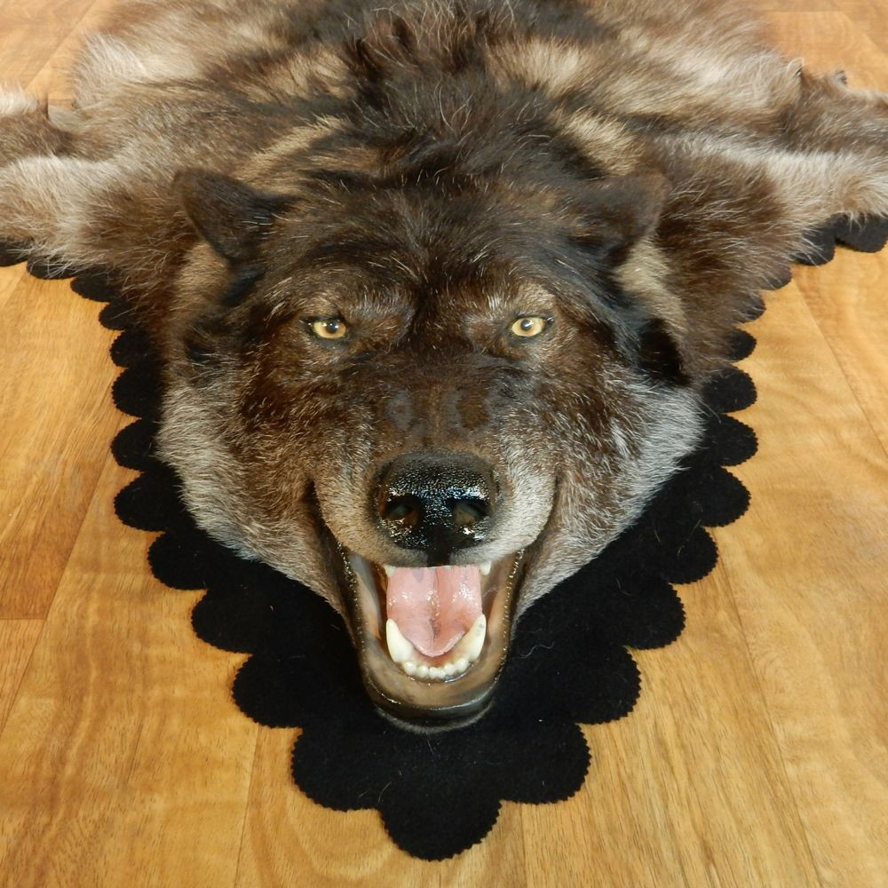 Black Wolf Rug Taxidermy Mount #13006 For Sale @ The Taxidermy Store