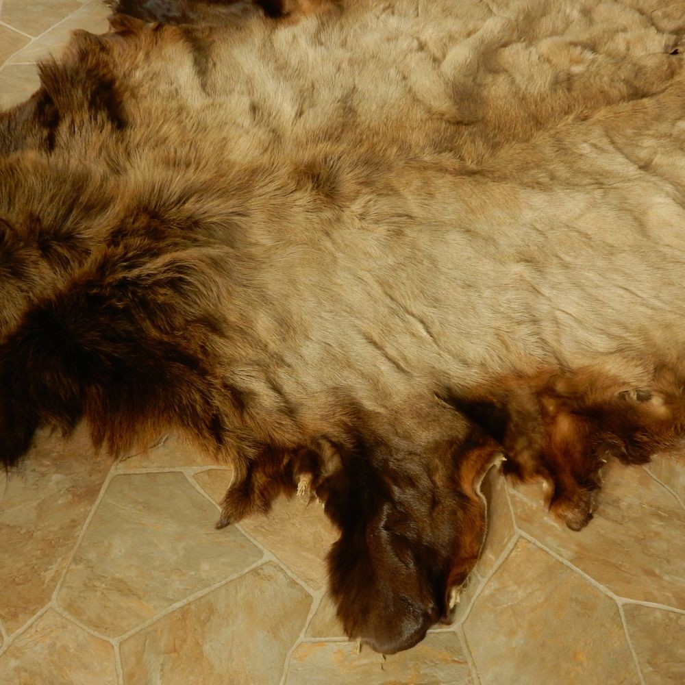 Elk Hide Skin For Sale #13014