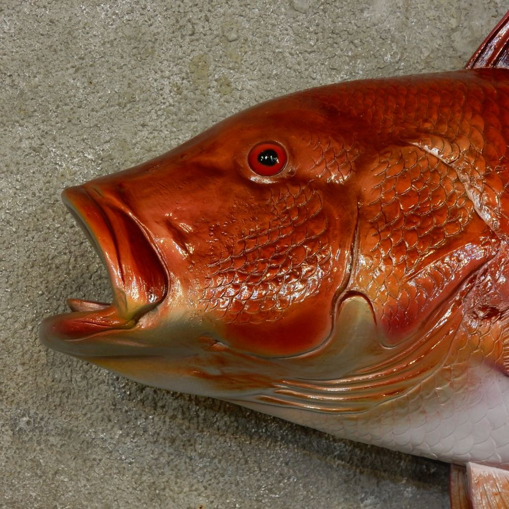 Red snapper replica fish mount for sale 16535 the for Fish mounts for sale