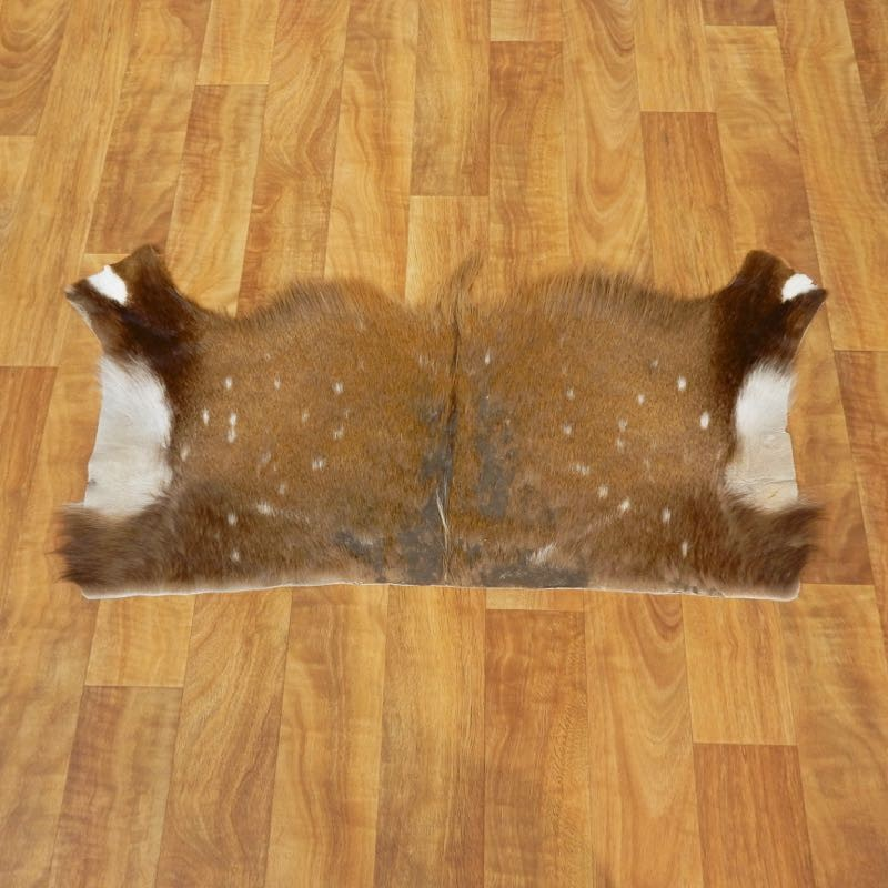 Bushbuck Rug For Sale #17451