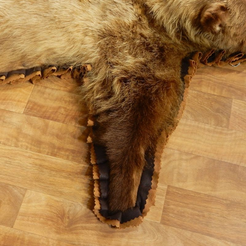 Grizzly Bear Full-Size Rug Mount For Sale #17500