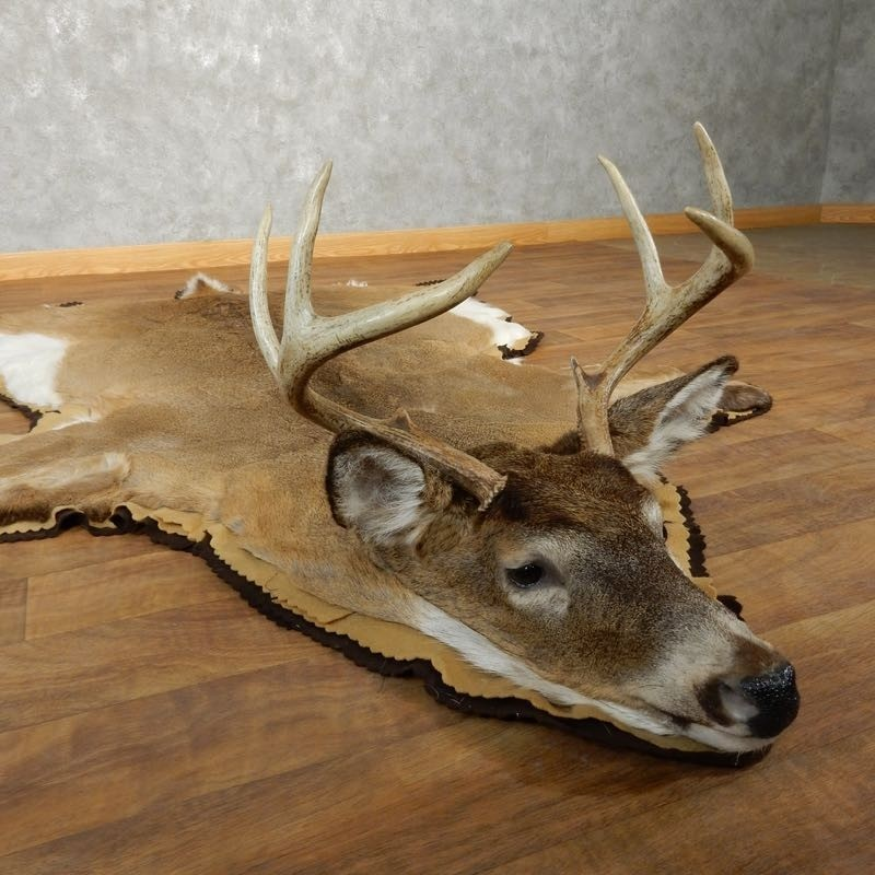 Whitetail Deer Shoulder Mount For Sale #17866