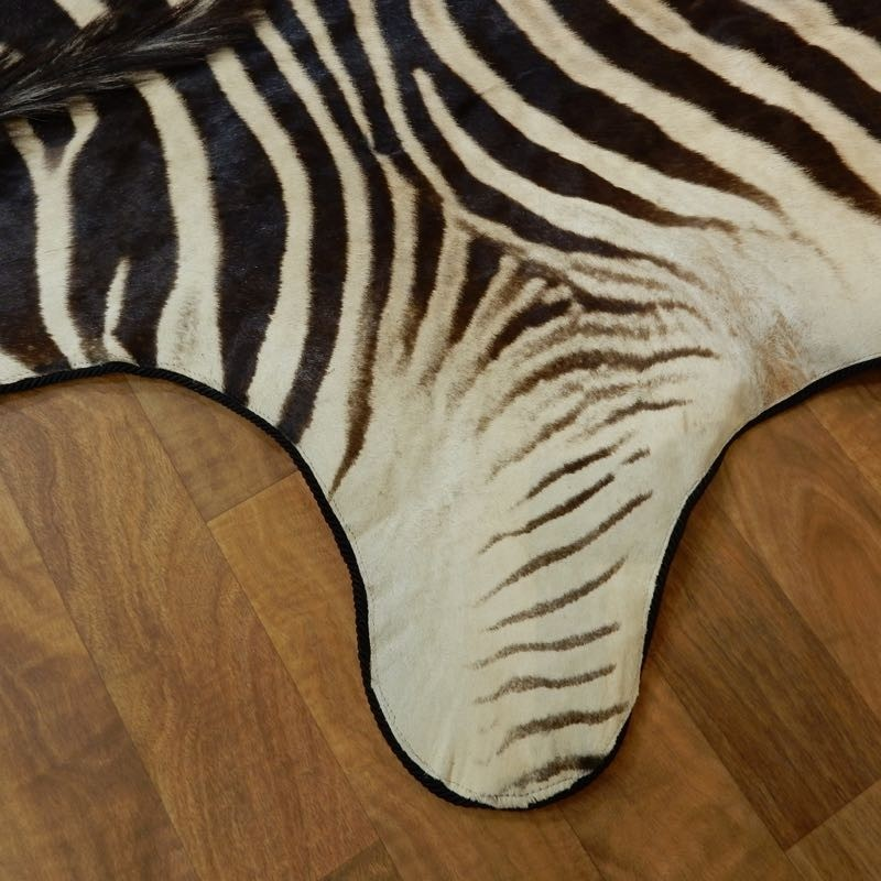 African Zebra Full-Size Rug For Sale #18212