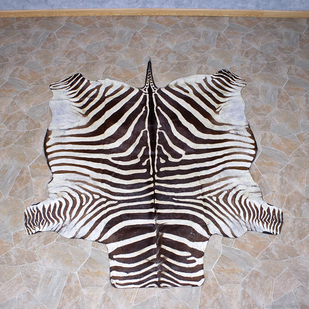 Zebra Rug Mount #10958