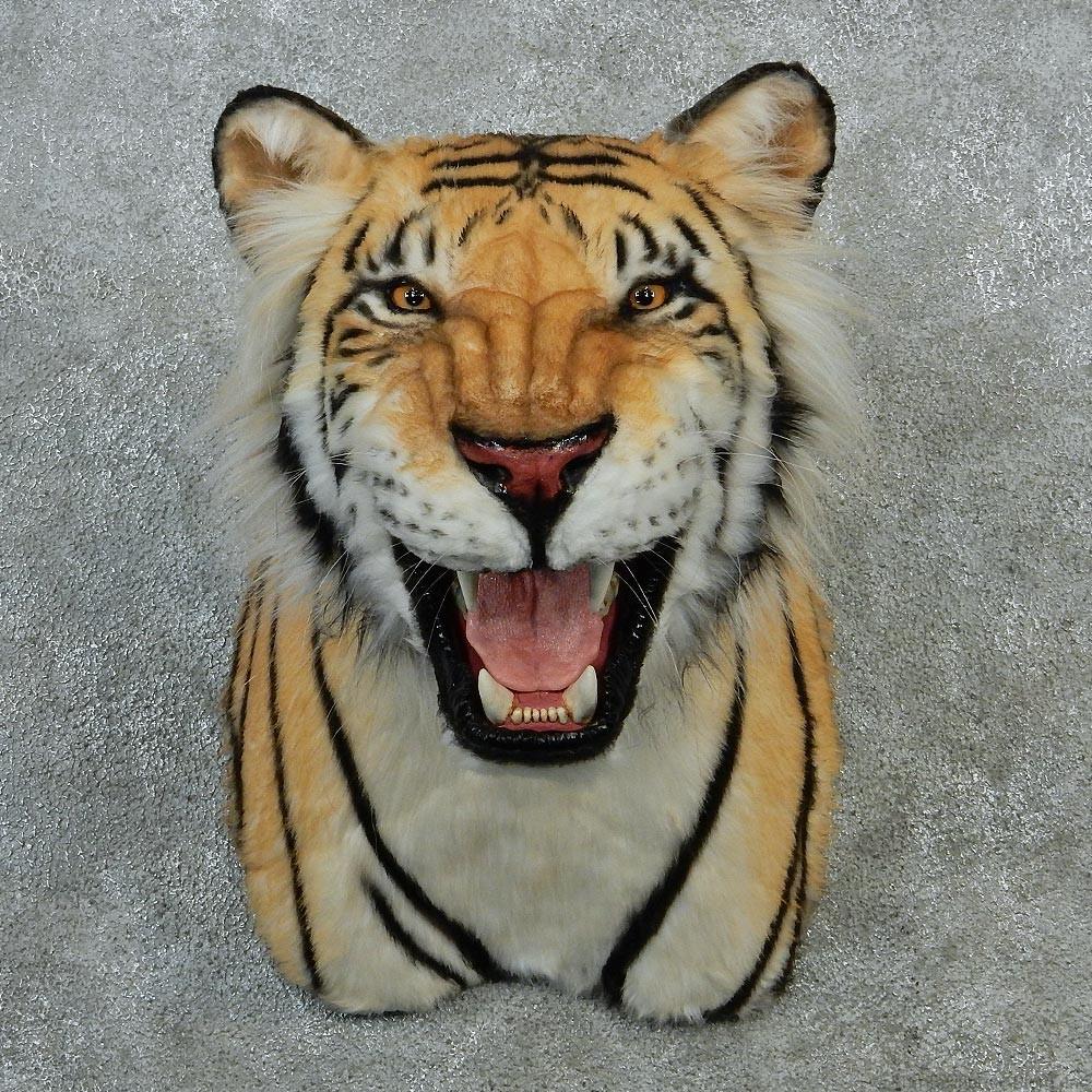 Reproduction Bengal Tiger Shoulder Mount #12900