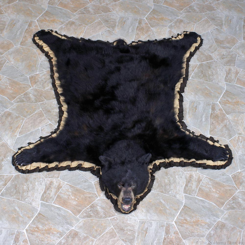 Black Bear Skin Rug Craigslist