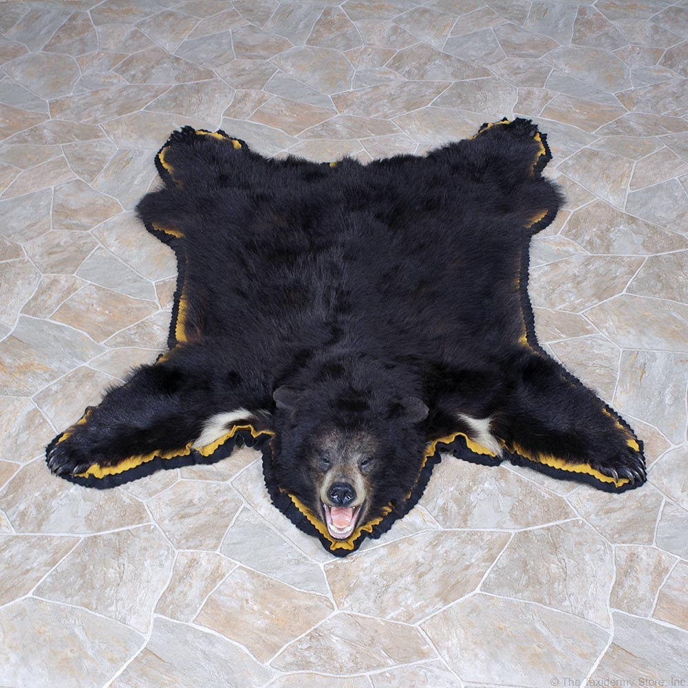 Black Bear Taxidermy Rug Mount #12340 For Sale @ The Taxidermy Store