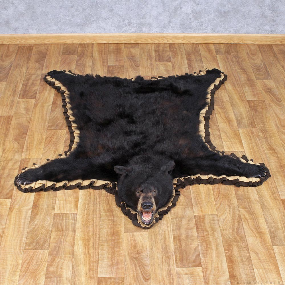 Black Bear Taxidermy Rug For The Rugs