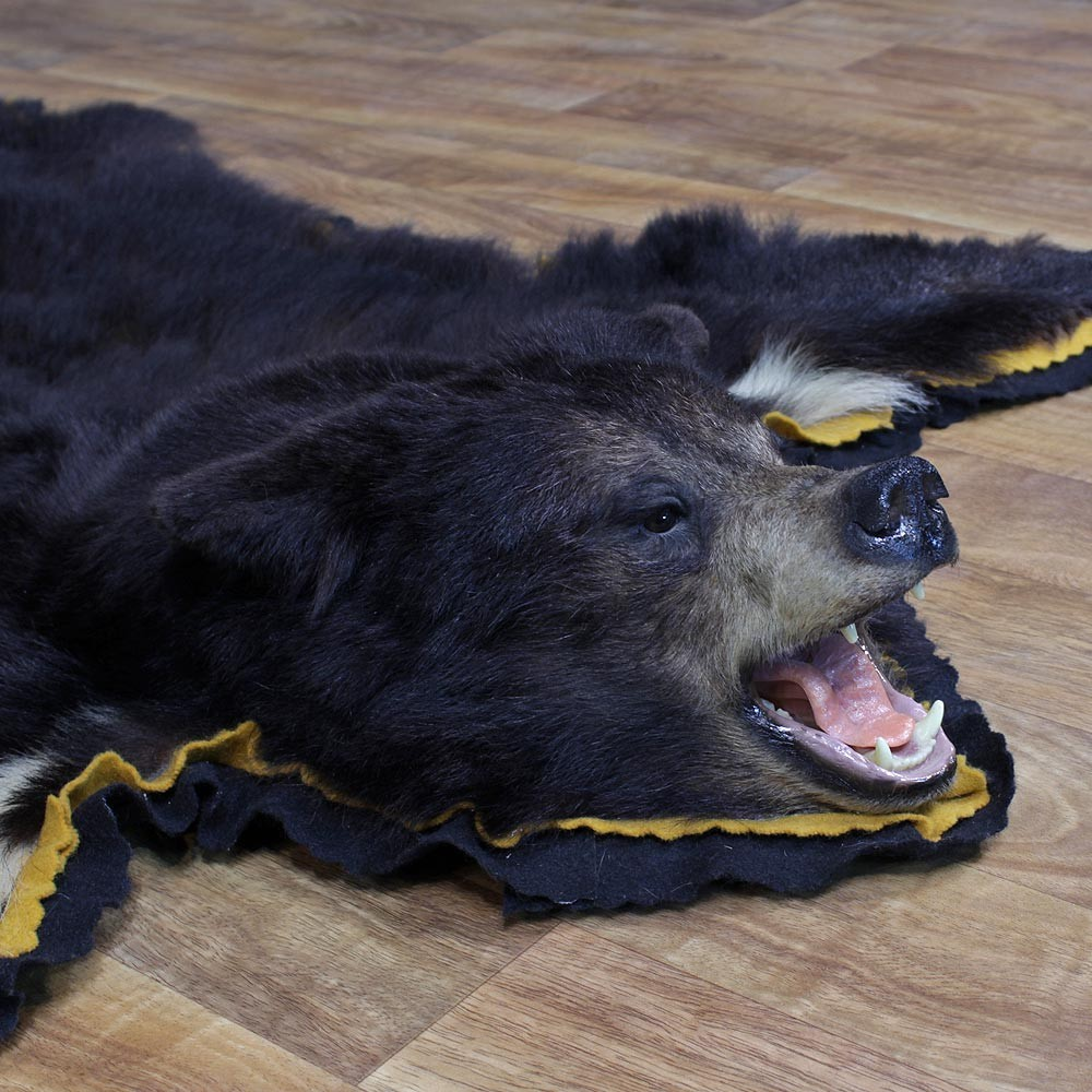 Taxidermy Bear Rug Www Imgkid Com The Image Kid Has It