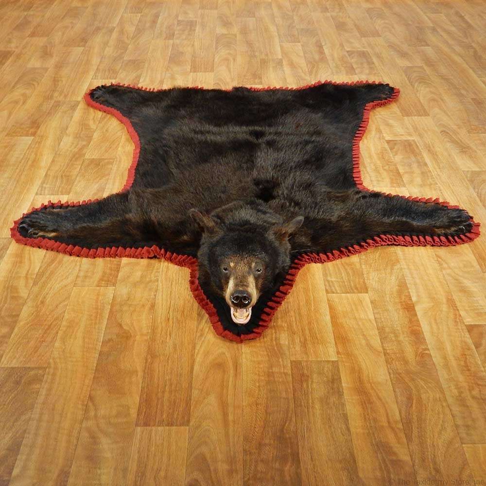 Black Bear Full Size Taxidermy Rug 13377 For The