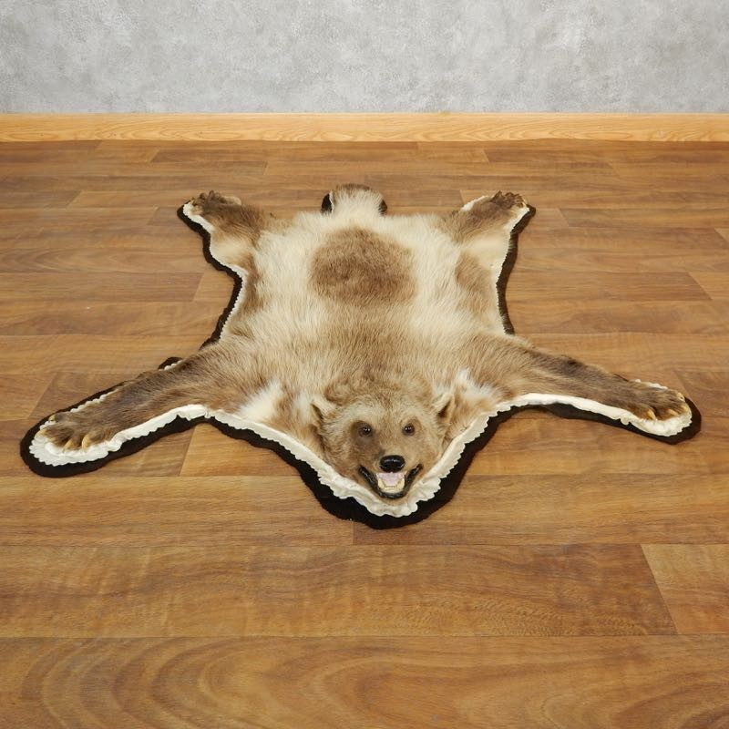 Alaskan Wolverine Rug Mount For Sale #17851