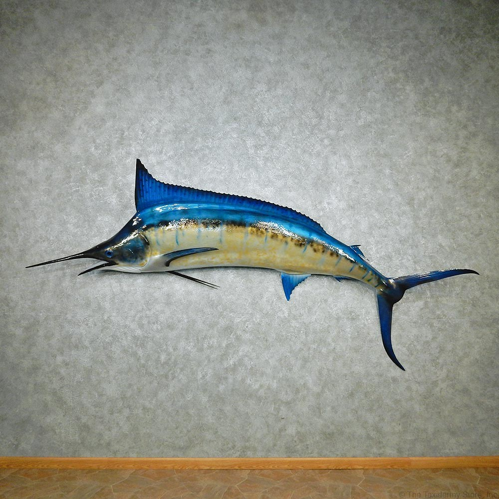 Marlin saltwater mount for sale 12568 the taxidermy store for Fish mounts for sale