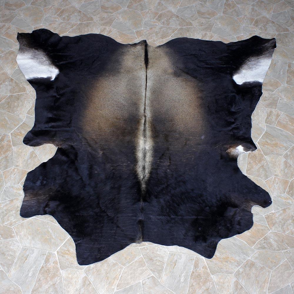 Brahma Bull Taxidermy Rug Hide 12334 For The
