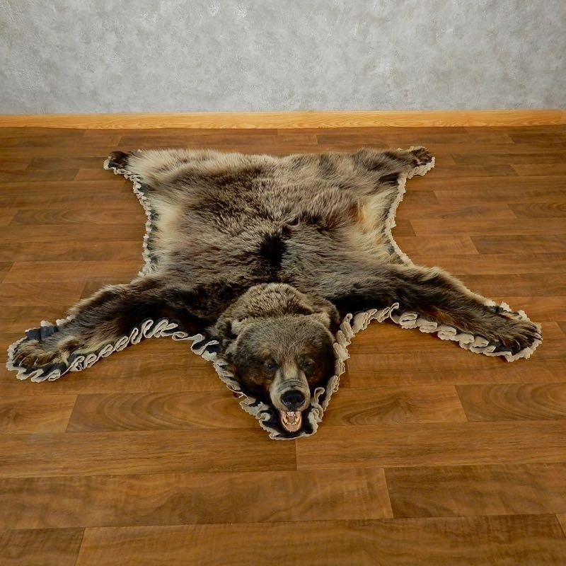 Black Bear Full-Size Rug For Sale #18206