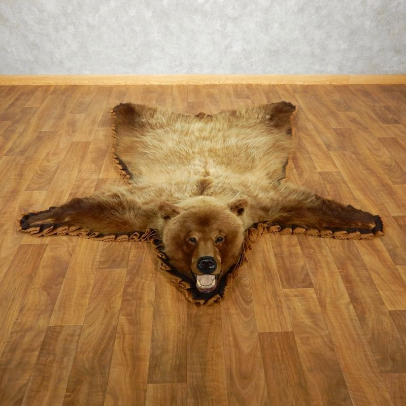 Grizzly Bear Rugs For Sale Rugs Ideas