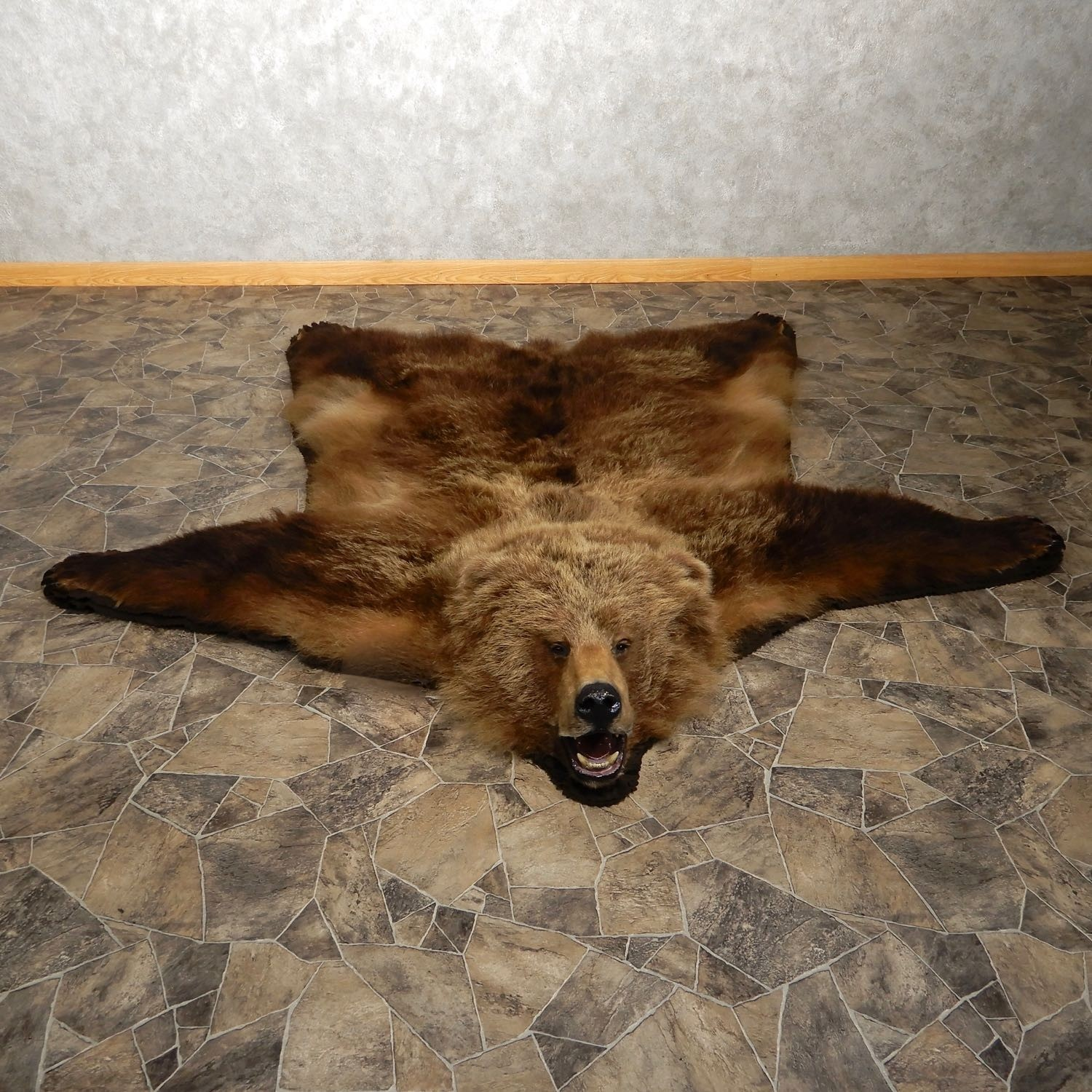 Grizzly Bear Full-Size Rug Mount For Sale #19920