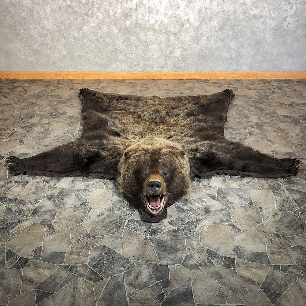 Grizzly Bear Full-Size Rug Mount For Sale #20340