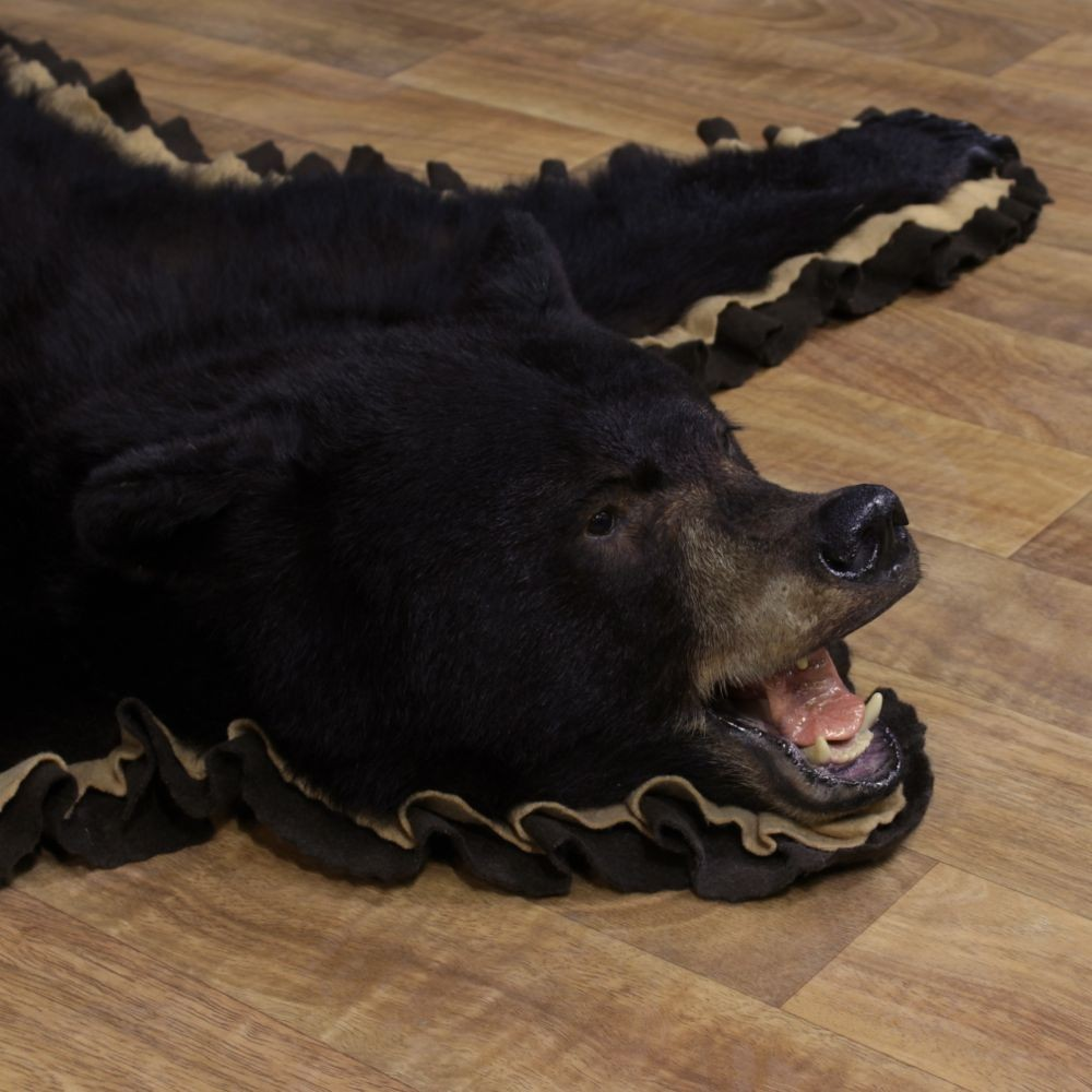 Black Bear Taxidermy Rug For 11161 The