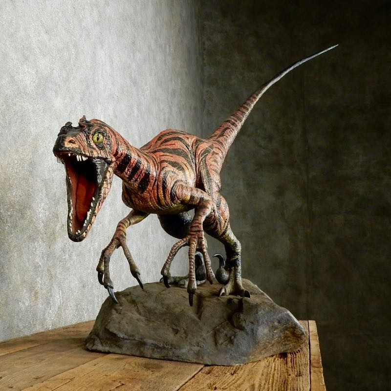 Raptor dinosaur replica taxidermy mount for sale velociraptor 17380 the taxidermy store - Raptor dinosaure ...