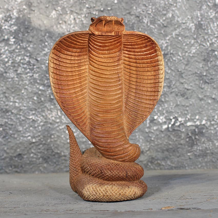 Cobra snake wood carving the taxidermy store