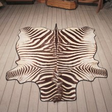 Zebra Rug Mount #11066 - The Taxidermy Store