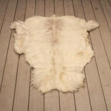 Caribou Skin