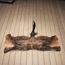 Tanned Wildebeest Skin
