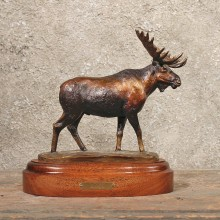 #11284 Rick Taylor Moose Bronze Sculpture For Sale