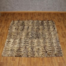 African Aardwolf Taxidermy Blanket For Sale