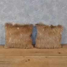 African Bushbuck Hide Pillow Set #12054 For Sale @ The Taxidermy Store