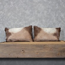 African Gemsbok Hide Pillow Set #12056 For Sale @ The Taxidermy Store