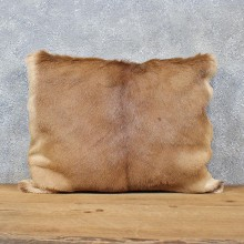 African Impala Hide Pillow #12049 For Sale @ The Taxidermy Store